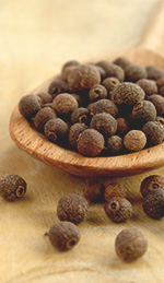 Allspice Berry Oil as a Warming Anaesthetic