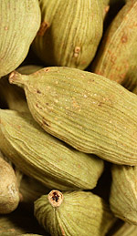 Cardamom Oil As a Circulatory Stimulant and Mind Tonic